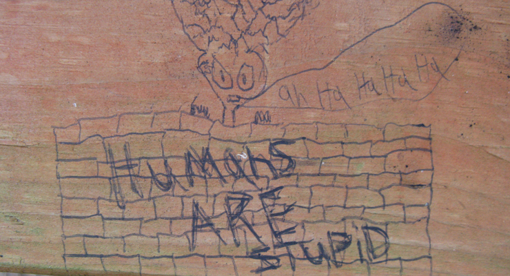 """Humans Are Stupid"" von Cat Branchman unter CC-BY-Lizenz"
